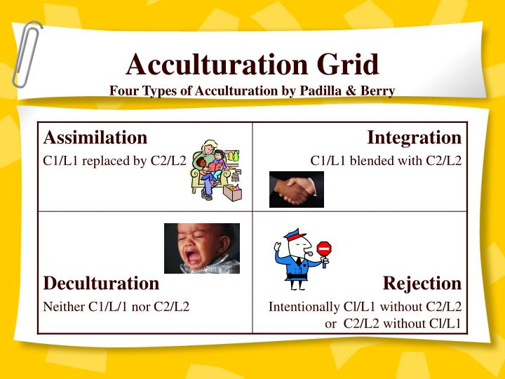 Acculturation Grid