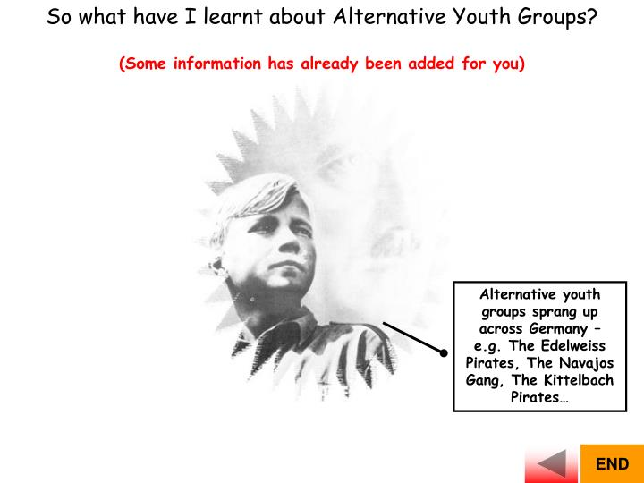 So what have I learnt about Alternative Youth Groups?