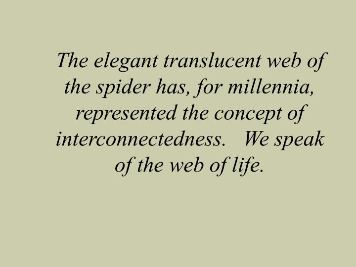 The elegant translucent web of the spider has, for millennia, represented the concept of interconnec...