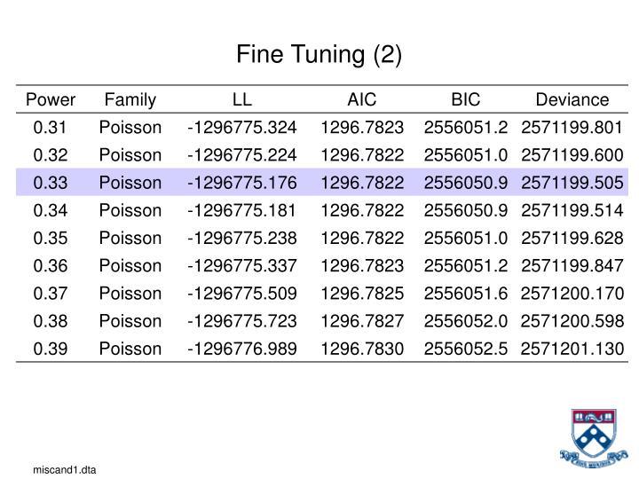 Fine Tuning (2)