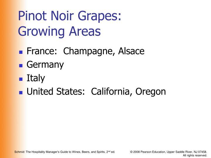 Pinot Noir Grapes: