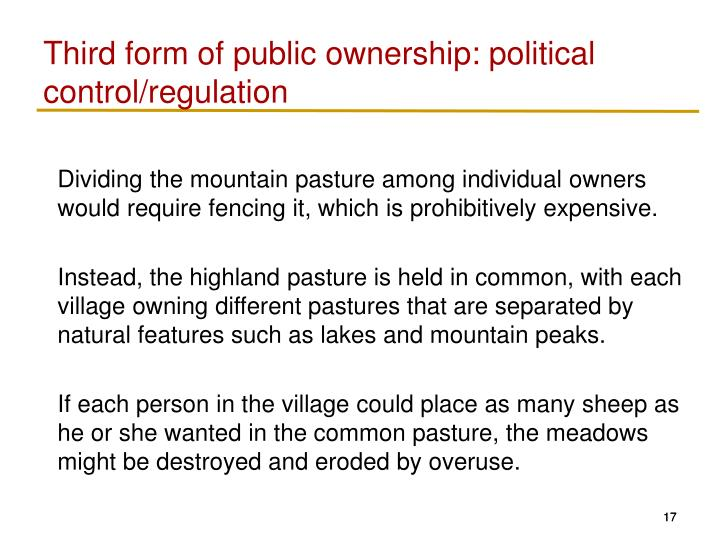 Third form of public ownership: political control/regulation