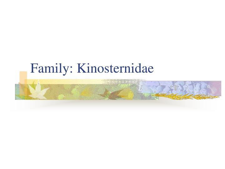 Family: Kinosternidae
