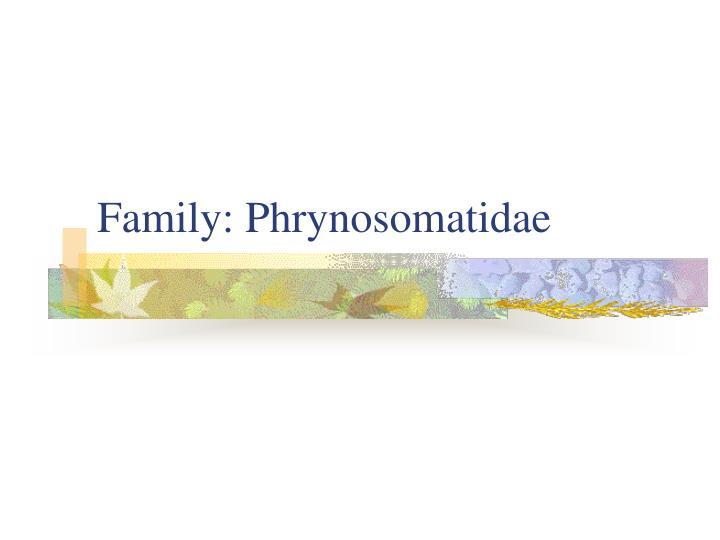 Family: Phrynosomatidae