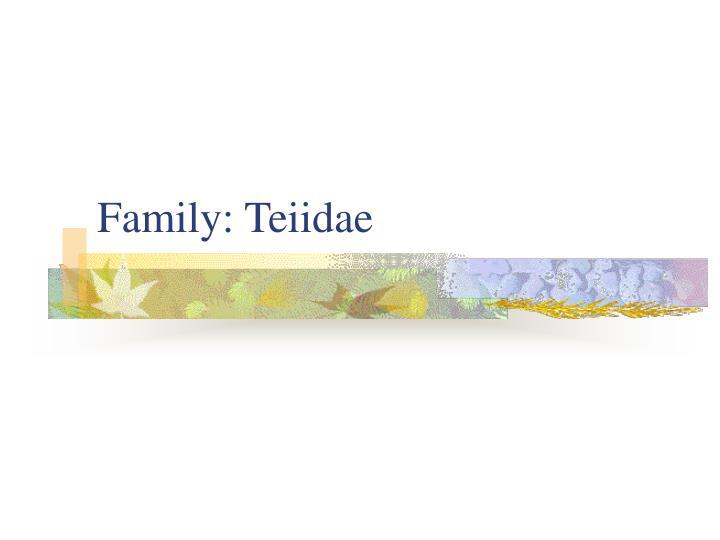 Family: Teiidae