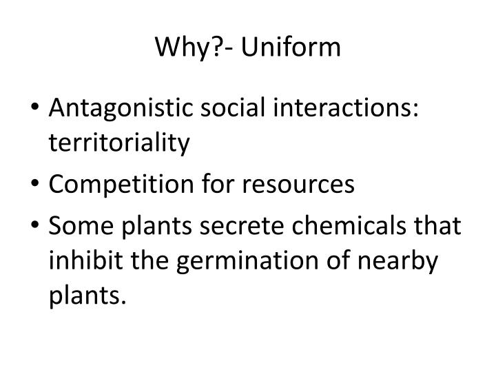 Why?- Uniform