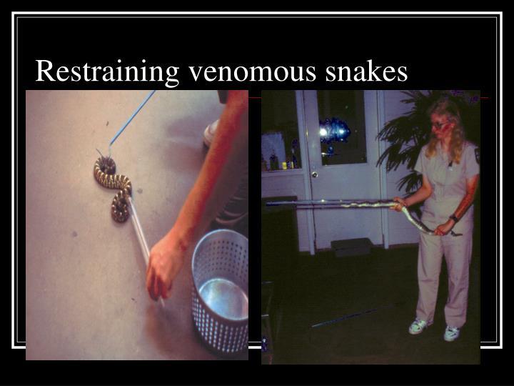 Restraining venomous snakes