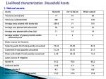 livelihood characterization household assets