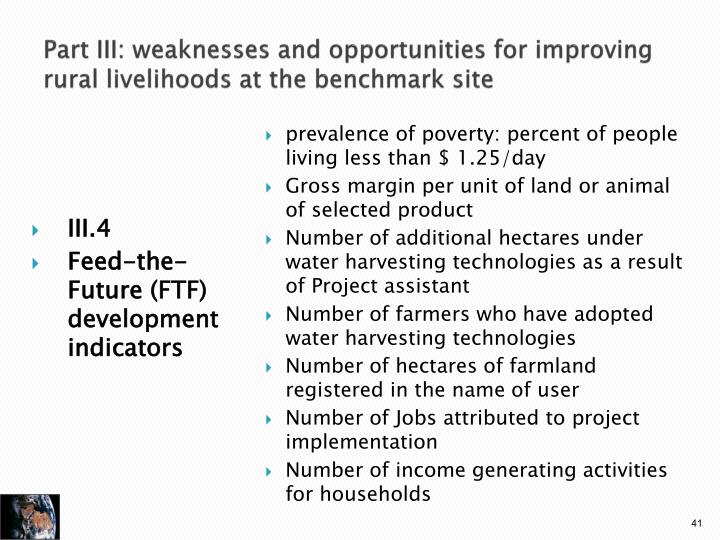 Part III: weaknesses and opportunities for improving rural livelihoods at the benchmark site