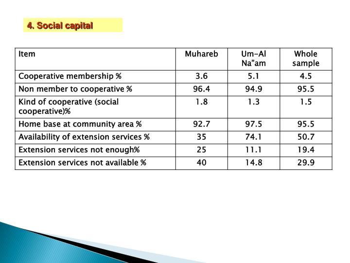 4. Social capital