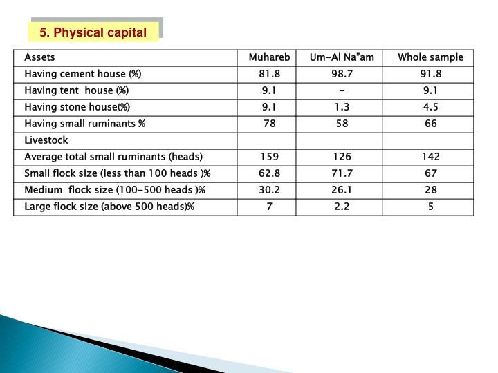 5. Physical capital