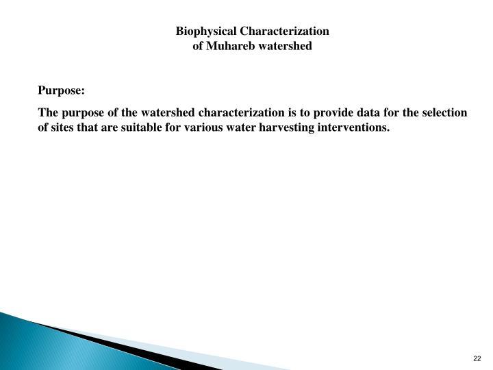 Biophysical Characterization