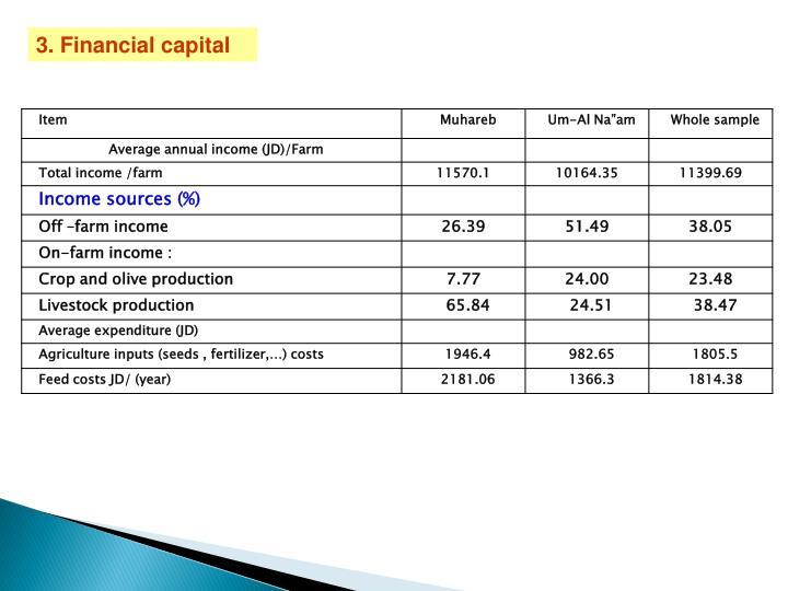3. Financial capital