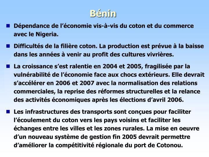 Dépendance de l'économie vis-à-vis du coton et du commerce avec le Nigeria.