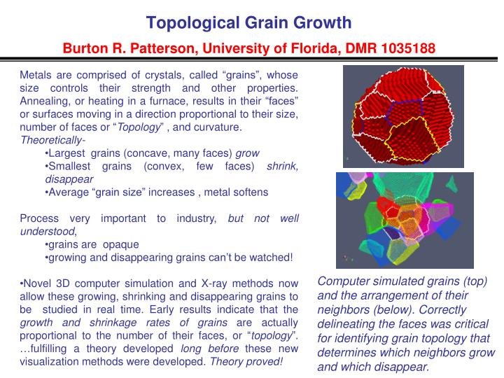 Topological Grain Growth