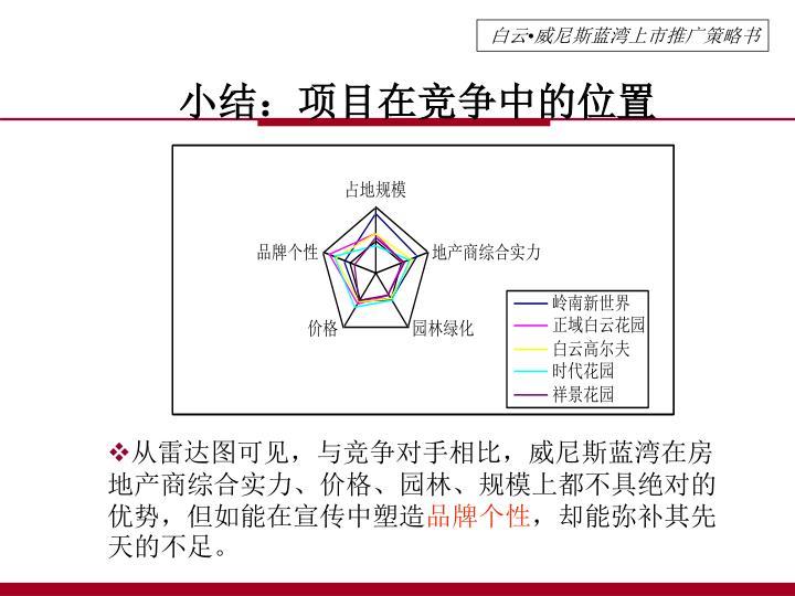 小结:项目在竞争中的位置