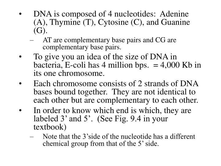 DNA is composed of 4 nucleotides:  Adenine (A), Thymine (T), Cytosine (C), and Guanine (G).
