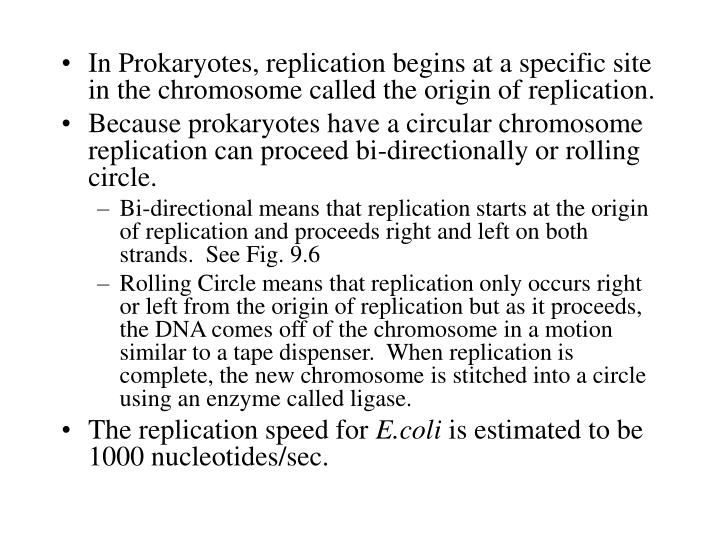 In Prokaryotes, replication begins at a specific site in the chromosome called the origin of replication.