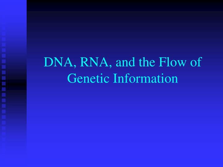 DNA, RNA, and the Flow of Genetic Information