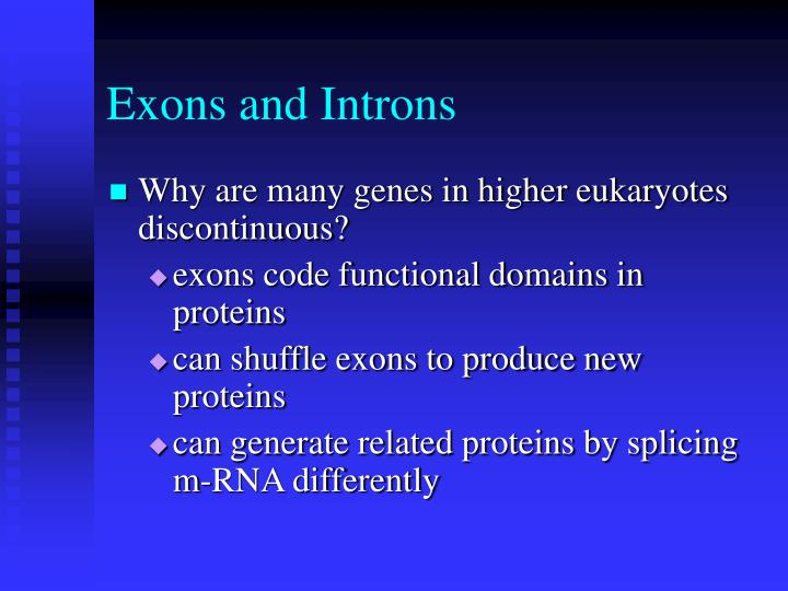 Exons and Introns