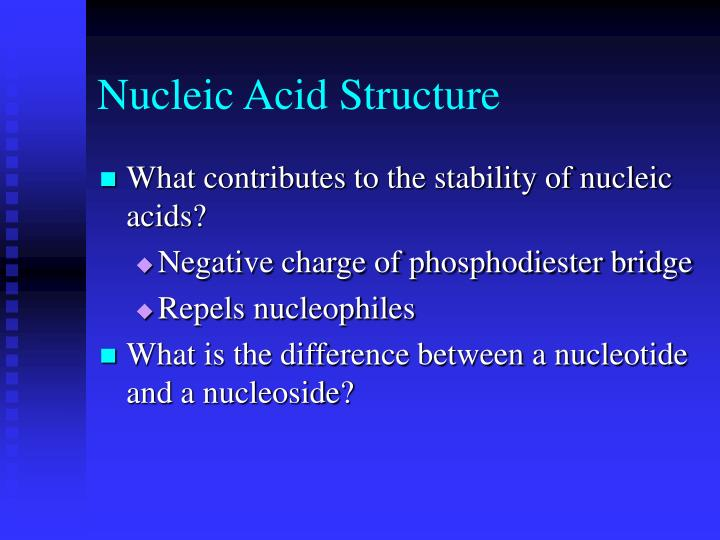 Nucleic Acid Structure