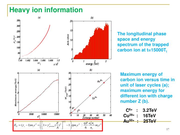 Heavy ion information