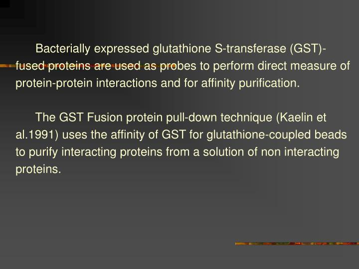 Bacterially expressed glutathione S-transferase (GST)-fused proteins are used as probes to perform direct measure of protein-protein interactions and for affinity purification.