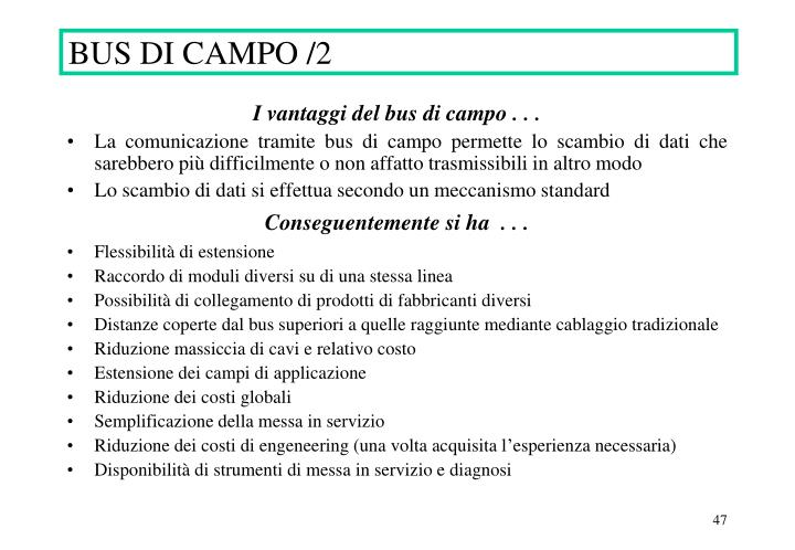 BUS DI CAMPO /2