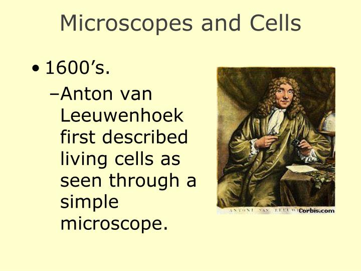 Microscopes and Cells