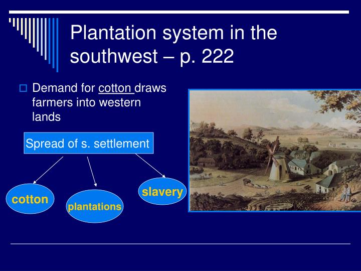 Plantation system in the southwest – p. 222