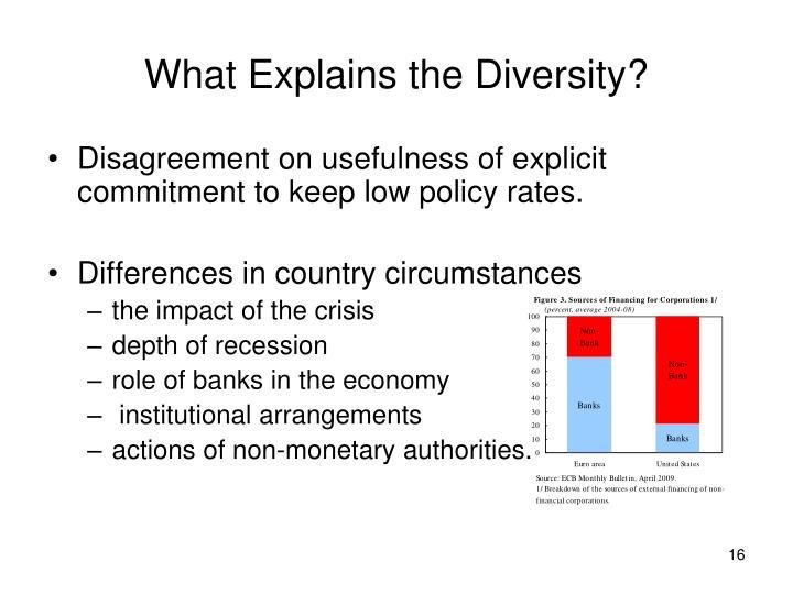 What Explains the Diversity?