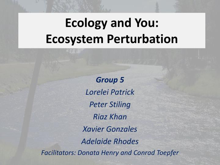 Ecology and you ecosystem perturbation