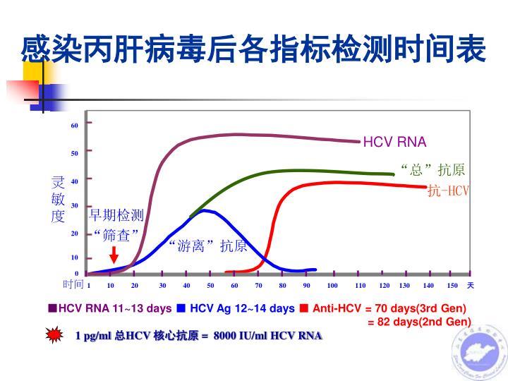 感染丙肝病毒后各指标检测时间表