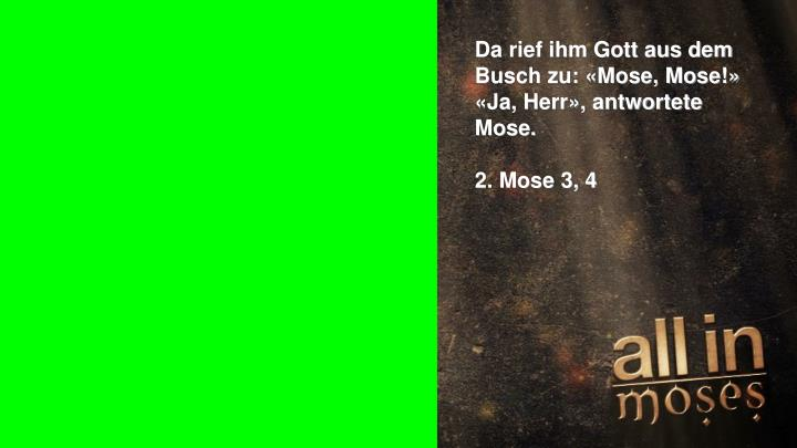 Da rief ihm Gott aus dem Busch zu: «Mose, Mose!»