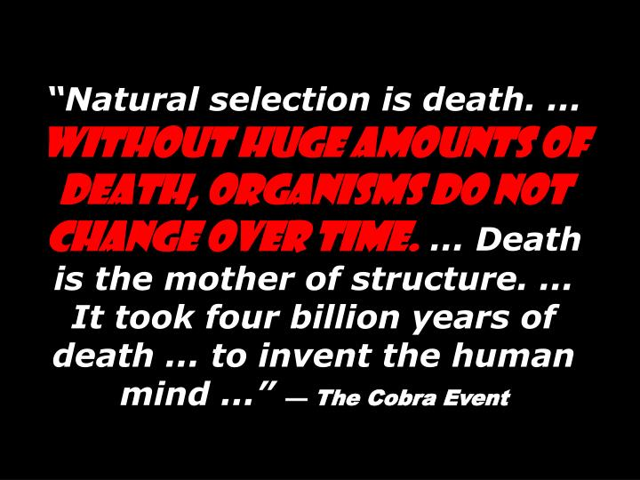 """Natural selection is death. ..."