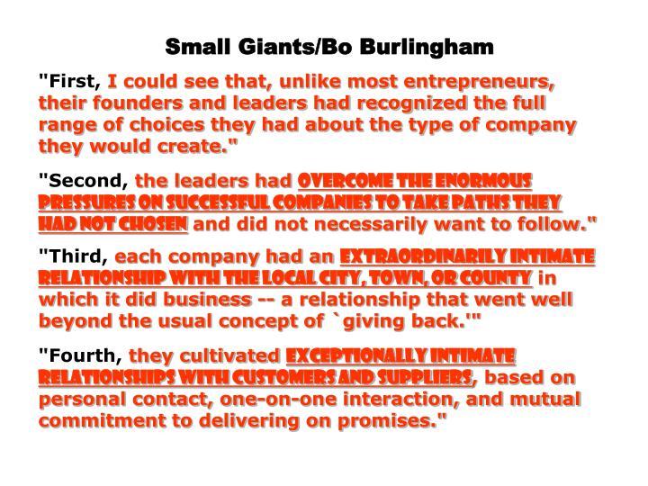 Small Giants/Bo Burlingham