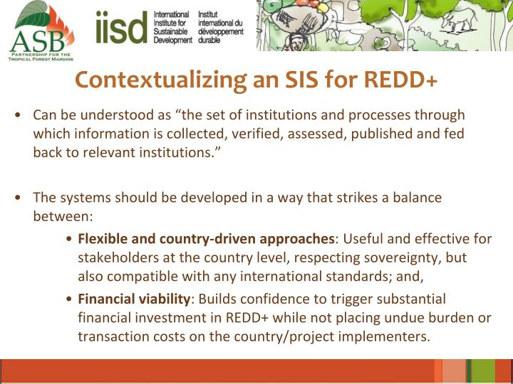 Contextualizing an SIS for REDD+