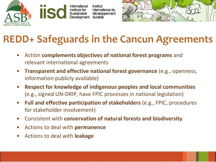 REDD+ Safeguards in the Cancun Agreements