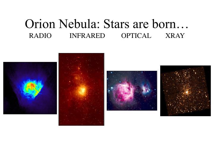 Orion Nebula: Stars are born…