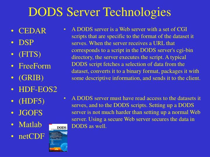 DODS Server Technologies