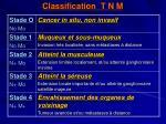 classification t n m