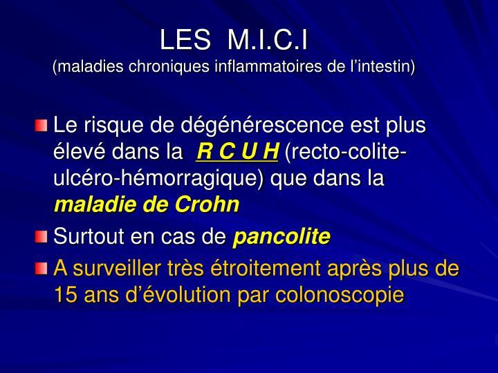 LES  M.I.C.I