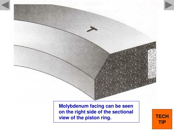 Molybdenum facing can be seen on the right side of the sectional view of the piston ring.