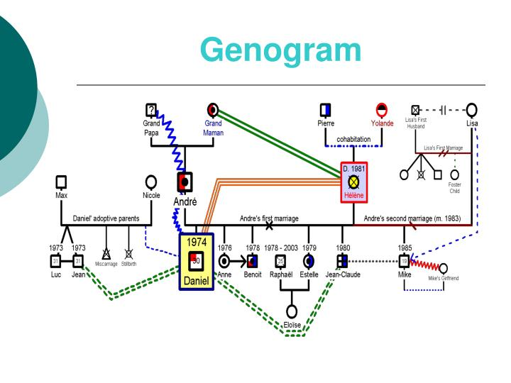 Genogram Template Powerpoint