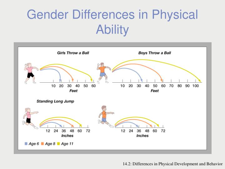 Gender Differences in Physical Ability