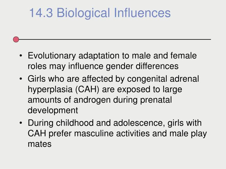 Evolutionary adaptation to male and female roles may influence gender differences