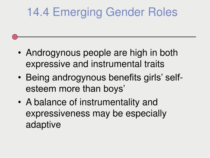 Androgynous people are high in both expressive and instrumental traits