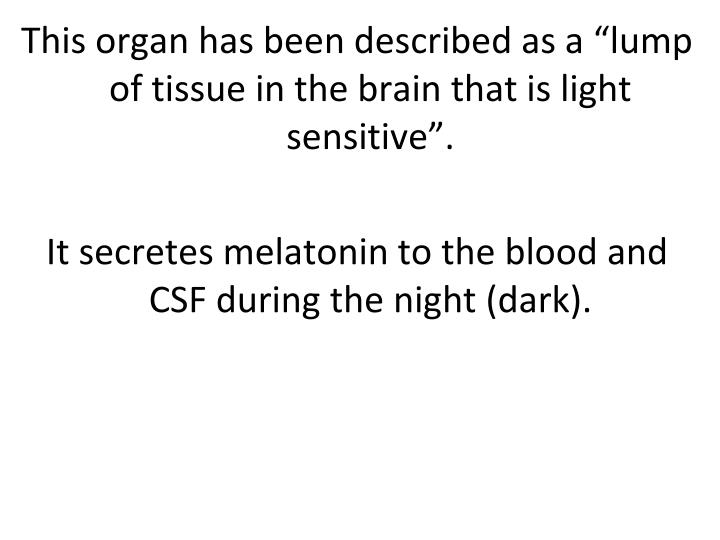 "This organ has been described as a ""lump of tissue in the brain that is light sensitive""."