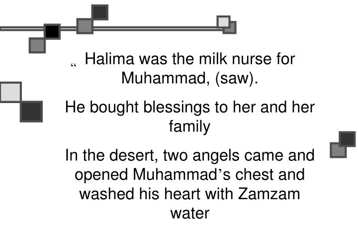 Halima was the milk nurse for Muhammad, (saw).