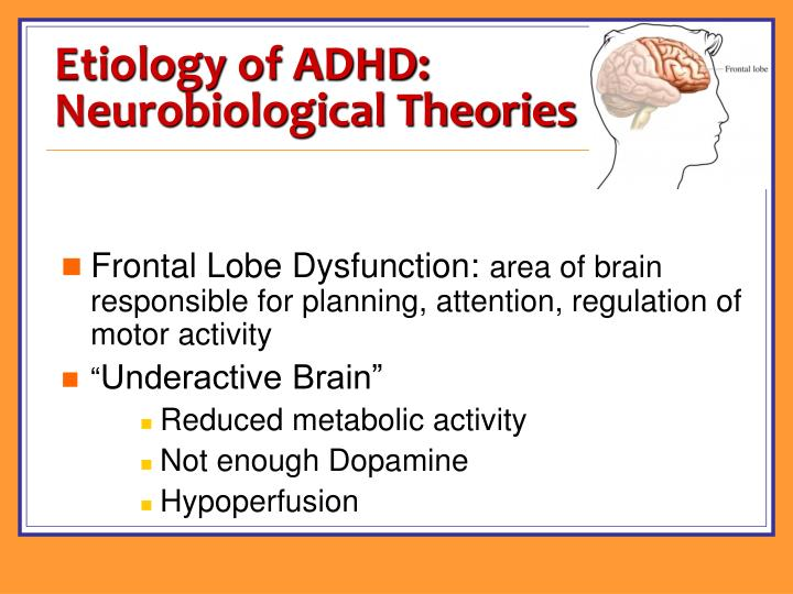 Etiology of ADHD: Neurobiological Theories